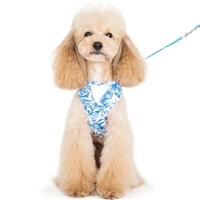 Blue Hawaii Small Dog Harness