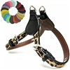 Lovin Leopard Step-in Small Dog Harness