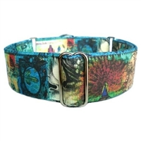 Enchantment Martingale Large Dog Collar