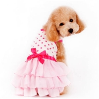 Dot N Ruffles Designer Dog Dress