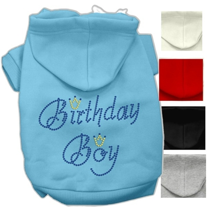 Birthday Boy Dog Hoodie