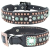 Western Leather Dog Collar with Turquoise and Studs