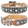 Western Leather Dog Collar | Turquoise Stones and Embossed Gator