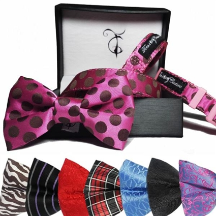 Bowtie, Collar and Leash Set