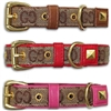 Gucci Style Leather Designer Dog Cat Collars