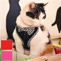 Evie Cat Harness with Bow Tie