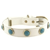 Turquoise and Leather Dog Collar