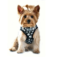 Skull and Crossbones Designer Small Dog Harness