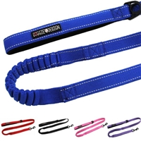 Soft Pull Traffic Dog Leash, Lead