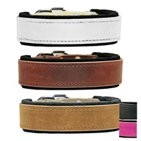 The Best Felt Lined Leather Dog Collar