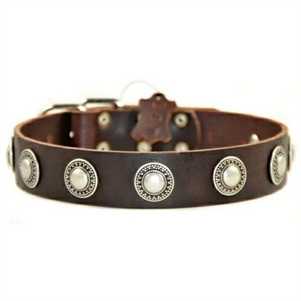 Simple Treasure Leather Designer Dog Collar