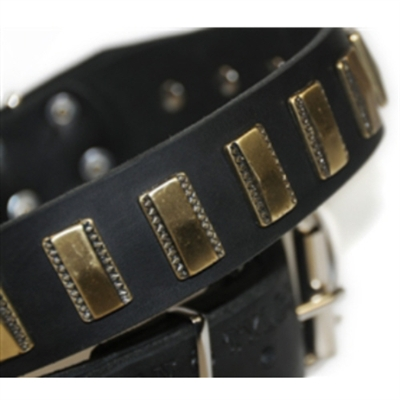 Brass Line Genuine Leather Designer Dog Collar