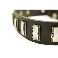 Silver Fire Genuine Leather Designer Dog Collar