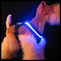 L.E.D. Lighted Small Dog Harness