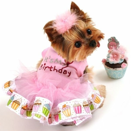 It's My Birthday Dog Tutu Dress