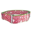 Peppermint Candy Martingale Greyhound Dog Collar