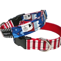 Patriotic Pup Designer Dog Collar