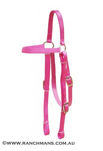 Showman® 2 Ply Nylon  Browband Headstall - Pink