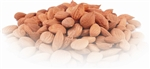 Organic Apricot Kernels Wildcrafted