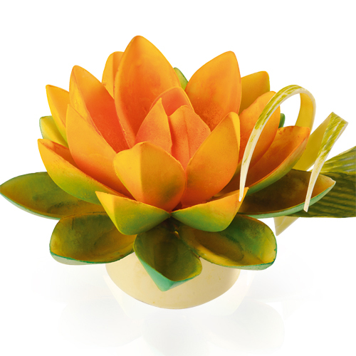 Big Lotus Molds Set for Chocolate Flowers