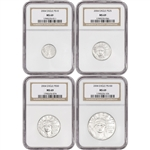 2004 American Platinum Eagle - 4-pc Year Set - NGC MS69
