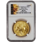 2013 American Gold Buffalo (1 oz) $50 - NGC MS70 - First Releases - Gold Label