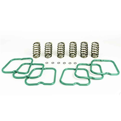 Pacbrake HP10241 Basic Kit 6 Heavy Duty Valve Springs for 1994-1998 Dodge 5.9L Cummins