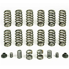 Pacbrake HP10245 Spring Kit 12 Heavy Duty Valve Springs for 1994-1998 Dodge 5.9L Cummins