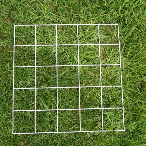 Quadrat 25 Squares | School Science Equipment