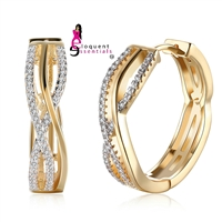 EE132E LUXURY GOLD HOOP EARRINGS