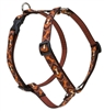 "Retired Lupine 3/4"" Down Under 20-32"" Roman Harness"