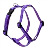 "Lupine 3/4"" Jelly Roll 20-32"" Roman Harness"
