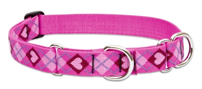 "Lupine 1"" Puppy Love 19-27"" Martingale Training Collar"