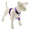 "Lupine 1"" Purple 26-38"" No-Pull Harness"