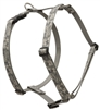 "Retired Lupine 1"" ACU  20-32"" Roman Harness"