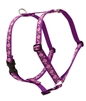 "Lupine 1"" Rose Garden 24-38"" Roman Harness"