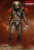 Elder Predator Collectible Figure Hot Toys MMS233