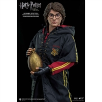 Harry Potter Goblet of Fire (Triwizard)  SA0008 Star Ace Toys