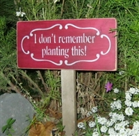 "I don't remember planting this 12 x 5.5"" stencil"