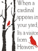 When a cardinal appears in your yard, It's a visitor from