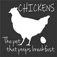 "CHICKENS The pet that poops breakfast. 12 x 12"" Stencil"
