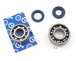 peugeot ZKL bearings and seals set