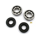 tomos A35 & A55 crankshaft bearings and seals party