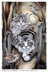 Tabby Or Not Tabby mystical visionary  Art Print