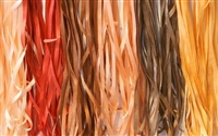 ThreadNanny 6 Spools of Brown Tone 100% Pure Silk Ribbons