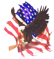 Eagle Holding American Flag Eagle Home of free Full color Graphic Window Decal Sticker