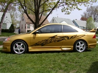 "Gold Car w/ Black dragon graphics #3 16""x74"""