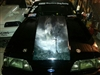 WOLF Cowl Hood Decal