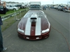 "Red Car w/ White OEM Style Rally Stripes 8"" Center with .5"" stripe on each side 10"" wide total"