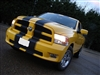 "Yellow Dodge Ram w/ Black 8"" Twin Rally Stripe Set"